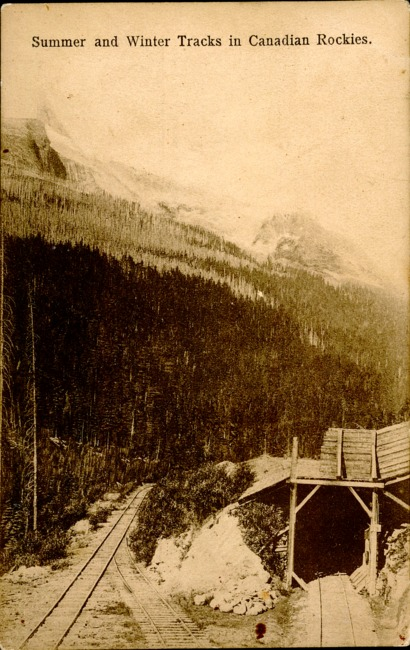 [Summer And Winter Tracks In Canadian Rockies Postcard]